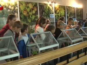 La Muzeul de Ştiinţele Naturii din Suceava s-a deschis ieri prima expoziţie de plante carnivore