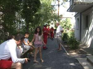 Panică în fața unui bloc din Suceava, după apariția unui șarpe printre copii