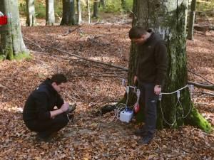 Noile generaţii de ingineri silvici, ajutate de echipamentele performante cu care a fost dotat Laboratorul de Biometrie Forestieră de la USV