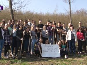 """500 de puieţi plantaţi în cantonul Mihoveni, de elevi ai Colegiului """"Spiru Haret"""""""