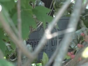 """Cimitirul inocenţilor, cu sutele de victime ale """"Orfelinatului Groazei"""" din Siret, tăinuit sub bălării"""