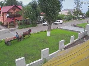 Domeniul public din fața unei case din Șcheia, teatru de război între proprietar și vecinii săi