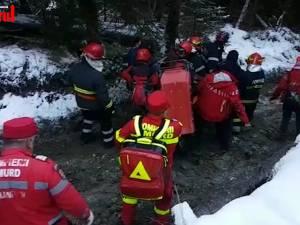 Bărbat rănit după ce un copac a căzut peste el