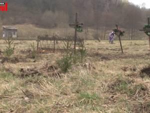 """300 de molizi au fost plantaţi în cimitirul din Siret, în memoria copiilor care au murit în fostul """"Orfelinat al groazei"""""""