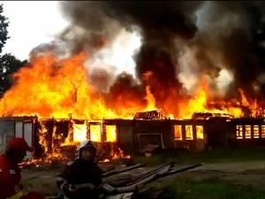 Incendiu violent în zona fostelor sere
