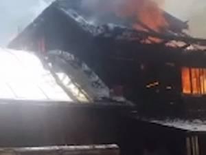 Un puternic incendiu a izbucnit joi la prânz, la un gater din localitatea Frumosu