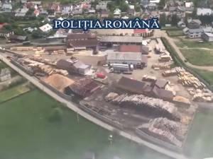 Lemn în valoare de aproape 1 milion de lei, confiscat în Suceava, în urma acțiunii coordonate de la București