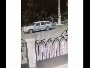 Pisoi abandonați dintr-o mașină, iar unul dintre ei este călcat și omorât