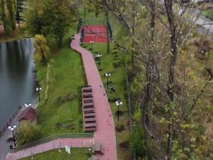 Peste 700 de arbori, plantați de Primăria Suceava în această toamnă