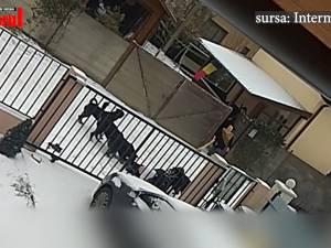 Femeie atacată de câini pe stradă